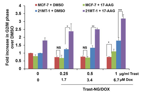 HSP90 inhibition potentiates the effect of Trast-NG/DOX on ErbB2-expressing breast cancer cells.