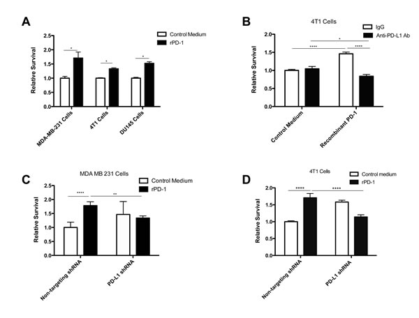 PD-1/PD-L1 interaction results in increased resistance to doxorubicin and docetaxel.