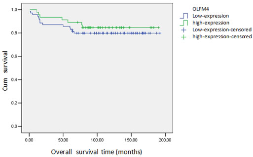 Cumulative survival curve of patients with ovarian serous adenocarcinoma and expression of OLFM4.