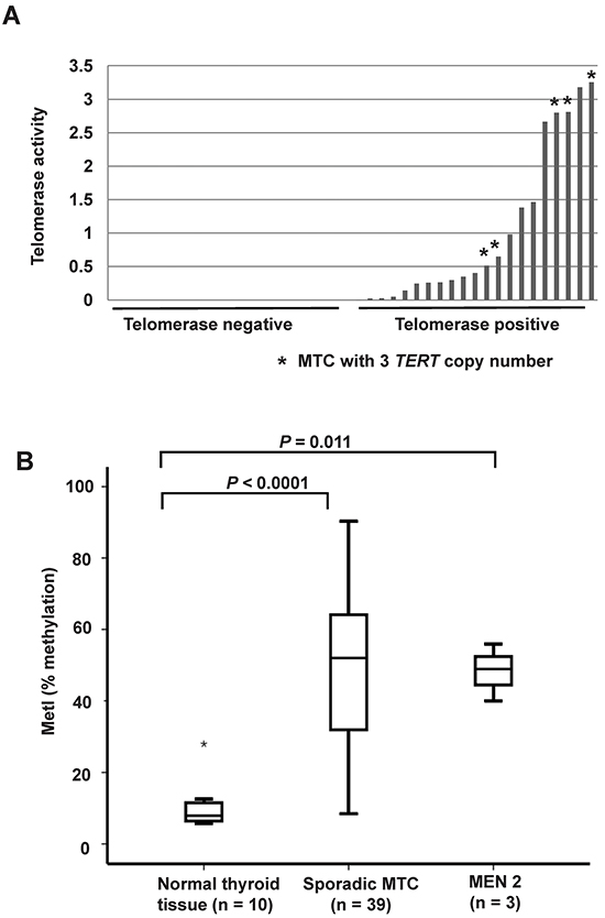 TERT copy number gain and promoter hypermethylation in sporadic MTCs.