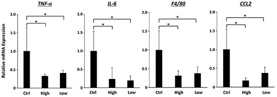 Effects of SA on expression levels of TNF-α, IL-6, F4/80 and CCL2 mRNAs in the WAT of the experimental mice.
