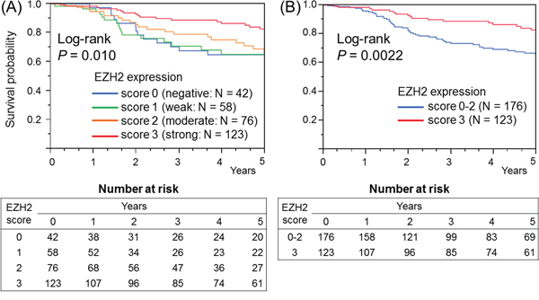 Kaplan–Meier survival curves for colorectal cancer (stages I-IV) according to the EZH2 expression level.