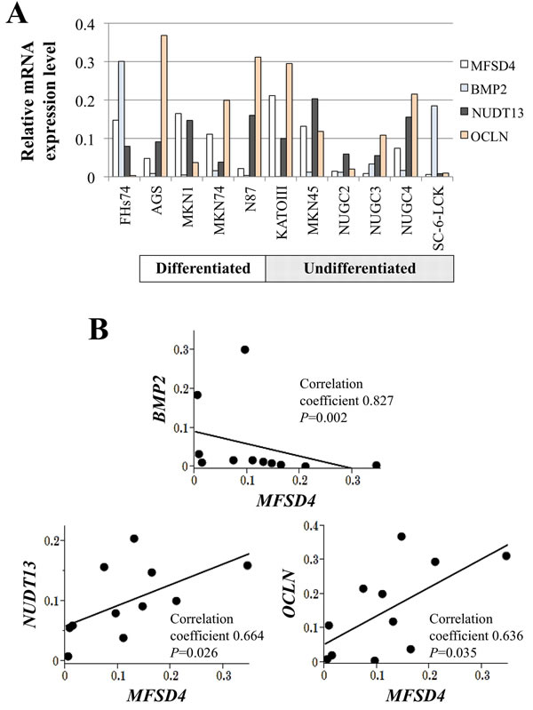 Expression analysis of 10 GC cell lines and the nontumorigenic epithelial cell line FHs74.