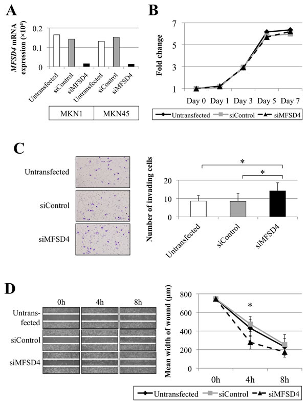 Effects of siRNA-mediated knockdown of