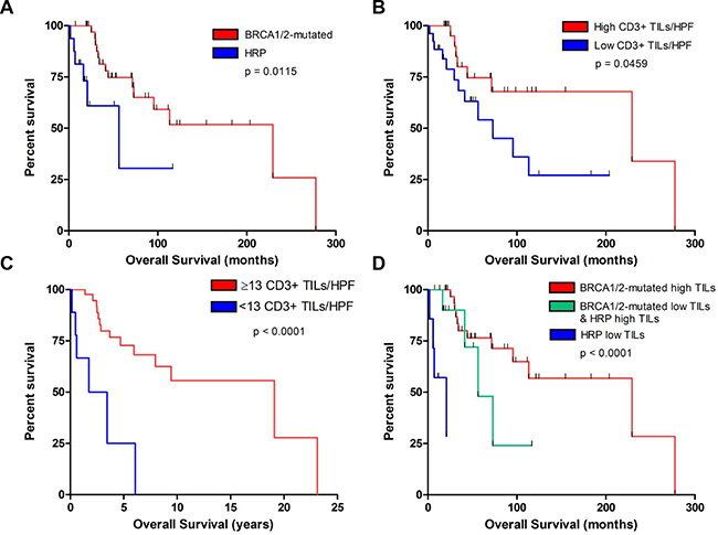 Association of CD3+ TILs and BRCA1/2-mutation status with survival in our institutional cohort.