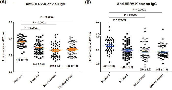 Anti-HERV-K env su IgM and IgG levels of the normal-1, normal-2, breast cancer and cervical cancer group.