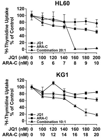 Synergistic growth-inhibitory effects of JQ1 and ARA-C on growth of AML cells.
