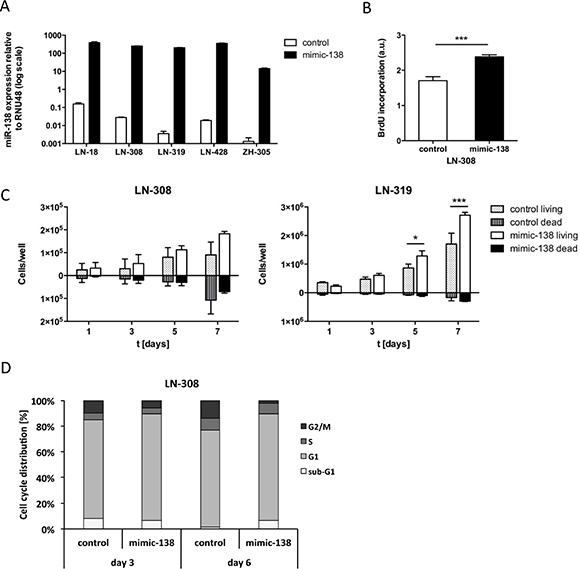 miR-138 induces proliferation of glioma cells in vitro.