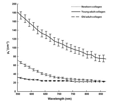 DRS analysis of 3D matrices as a function of collagen age.