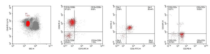 Result of the flow cytometry, based on the biopsy tissue