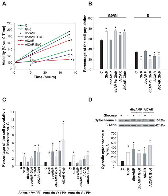Hepatocarcinoma derived cells survival during glucose deprivation.