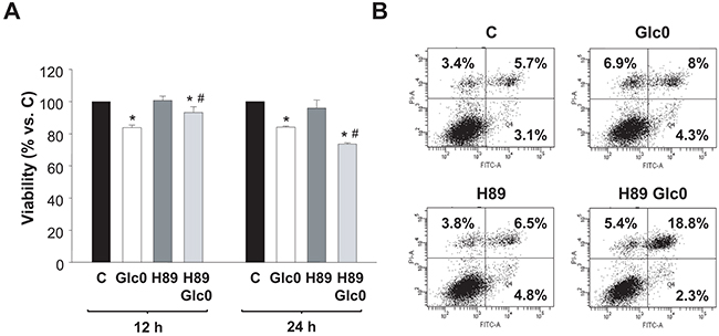 Effects of PKA inhibition on cell viability during glucose deprivation.