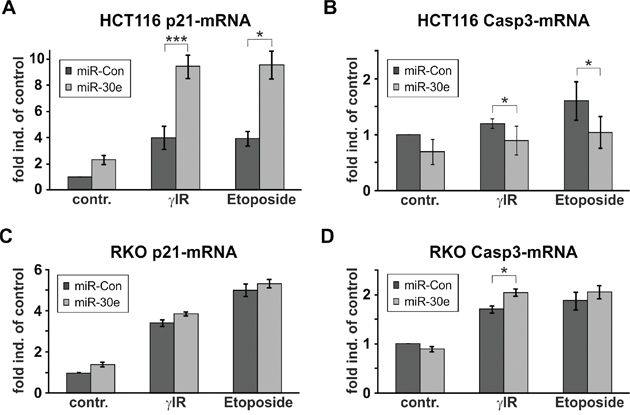 MiR-30e increases p21-mRNA expression only in HCT116 cells.