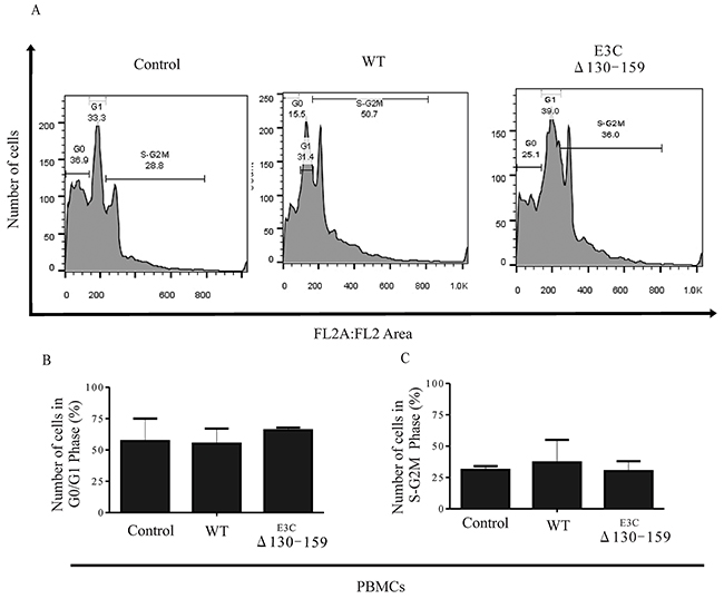 EBNA3C residues 130-159 of EBV is critical for G1 to S phase progression.