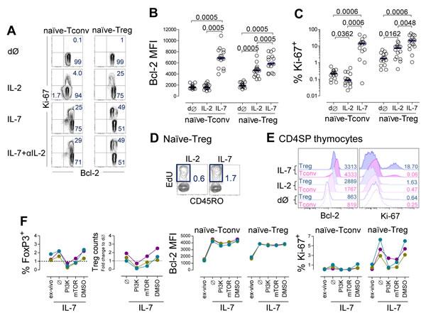 IL-7 induced naïve-Treg survival and proliferation.