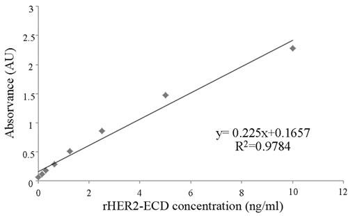 Standard curve for sHER2 measurements using a commercial ELISA kit.