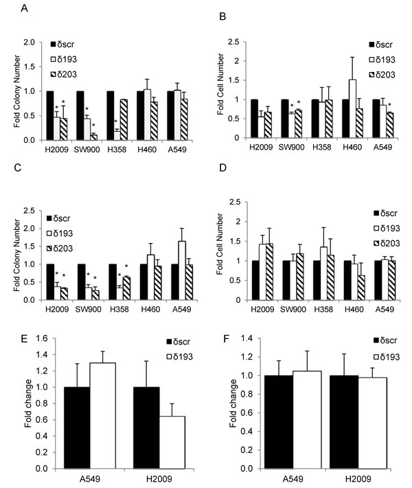 PKCδ regulates survival in K-ras dependent cell lines.