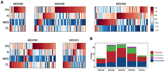 Expression patterns of GBM subtype-specific lncRNAs in individual tumors.