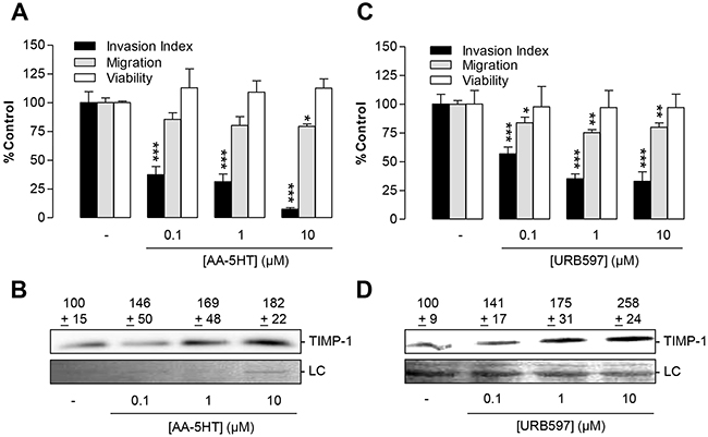 Impact of the FAAH inhibitors AA-5HT and URB597 on tumor cell invasion and TIMP-1 expression of A549 cells.