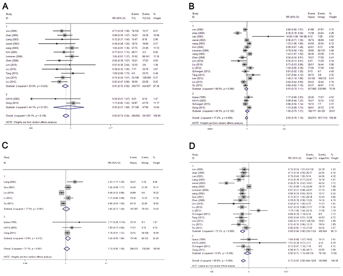 The forest plot of RRs was assessed for association between MMP-9 and clinicopathological features, including T category