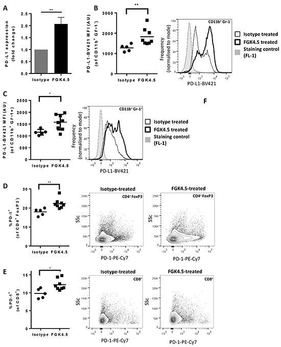 αCD40 upregulates PD-L1 in tumour and spleen