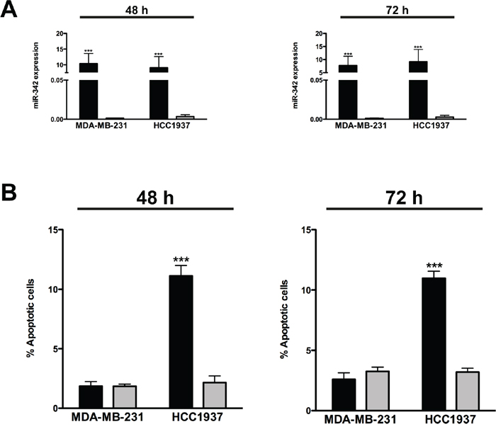 miR-342 overexpression induces apoptosis in BRCA1-mutant breast cancer cells.