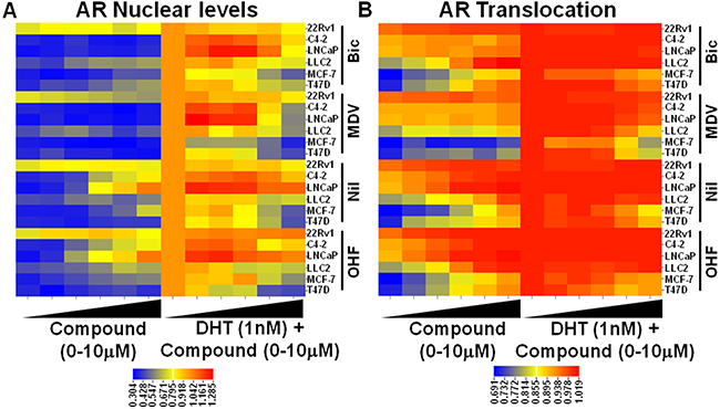 Characterization of established AR antagonists by HTM across multiple cell lines.