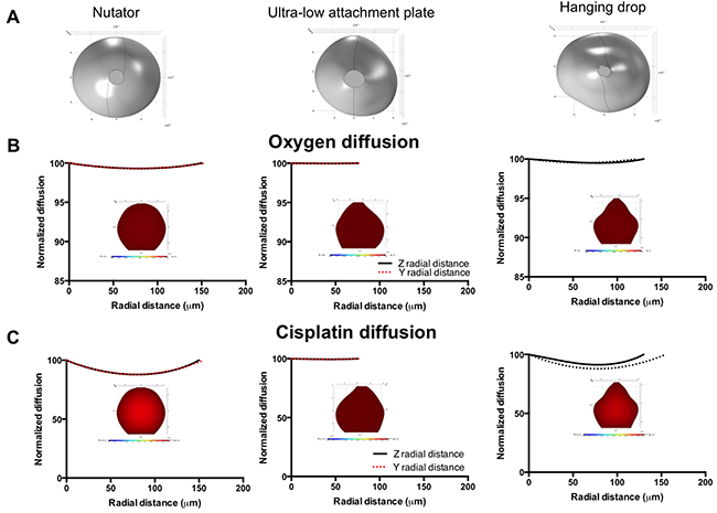 Diffusion profiles of oxygen and diffusion in 500 cells/drop ovarian cancer experimental spheroids as a function of platform used for spheroid generation.