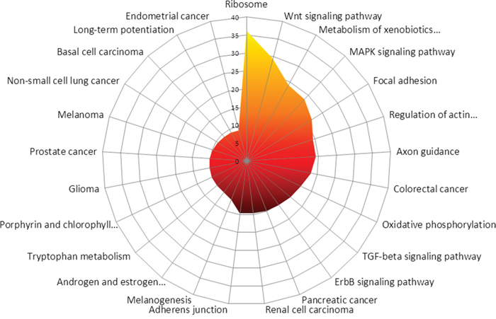 In silico prediction of the most affected KEGG-pathways between MDM2-positive and negative tumours is shown.