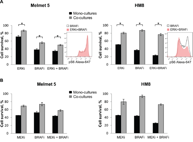 ERK or MEK inhibitor does not eliminate the protective influence of fibroblasts in the co-cultures.
