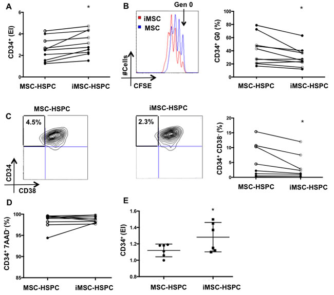 Senescent MSC reduce HSPC quiescence and the frequency of primitive CD34