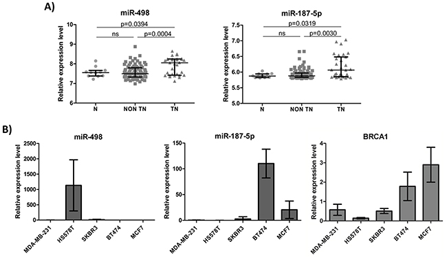 miR-498 and miR-187-5p expression levels in breast tumors and breast cancer cell lines of different subtypes.