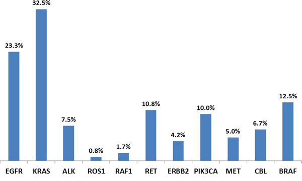 NSCLC adenocarcinoma patients' genetic alterations detected by NGS.