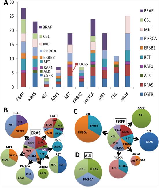 Gene and gene alteration correlation.