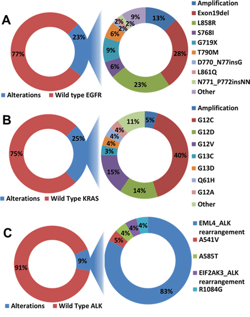 Genomic alteration in the entire cohort of adenocarcinoma samples.