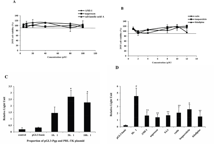 PRMT1 inhibitors decreased the activity of MDR1 promoter.