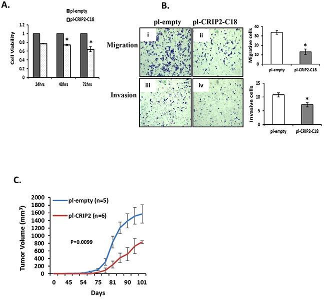 Stable overexpression of CRIP2 reduced tumorigenicity in vitro and in vivo.