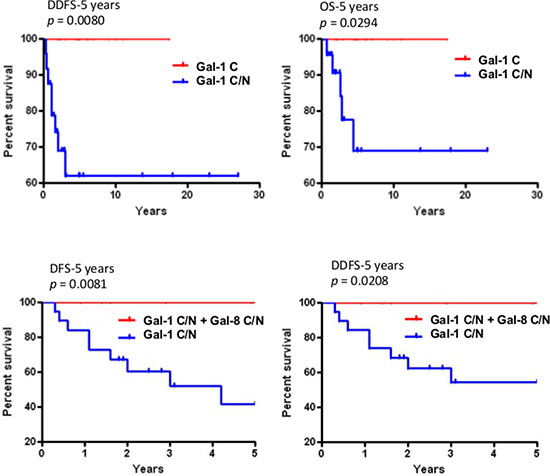 Prognostic potential of nuclear galectin-1 and -8.