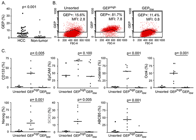 GEP positive HCC cells express stem cell related molecules.
