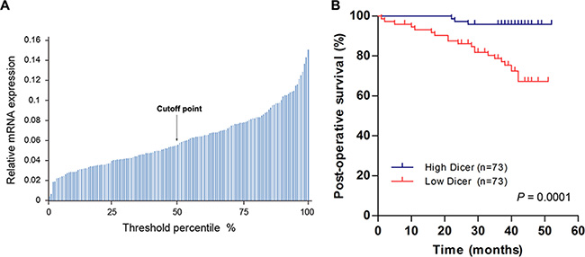 Lower Dicer levels predict shorter post-operative survival in VHL-deficient ccRCC patients.
