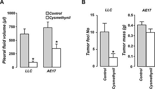 Cysmethynil inhibits pleural fluid accumulation in adenocarcinoma and mesothelioma-induced MPE and reduces adenocarcinoma pleural dissemination.