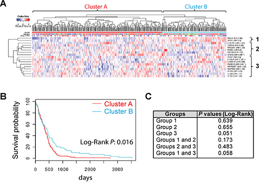 A group of SKGs presents a novel prognostic signature for GBM.