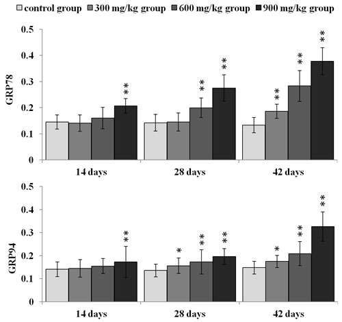 Changes of GRP78 and GRP94 protein expression levels at 14, 28 and 42 days.
