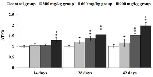 Changes of ATF6 mRNA expression levels at 14, 28 and 42 days.