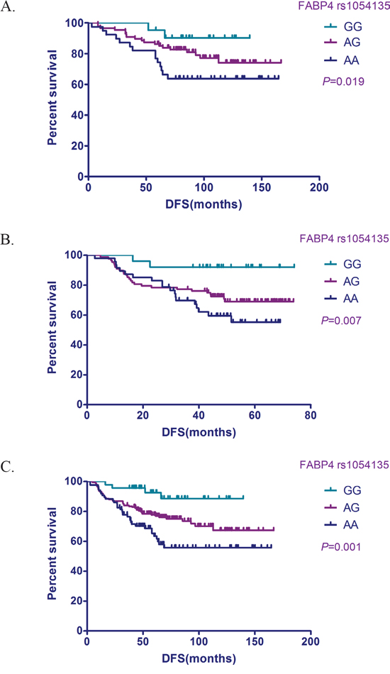 Relationship between the FABP4 SNP rs1054135 and DFS in TNBC patients.