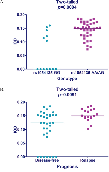Scatterplot of FABP4 expression.