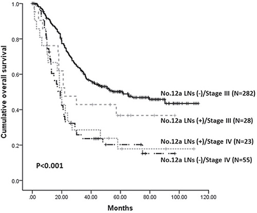 Kaplan-Meier survival analysis of patients with stage III/IV stratified by No.12a LNs metastatic status (P < 0.001).