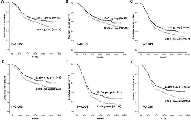 Kaplan-Meier survival analysis of patients between 12aD+ group and 12aD–group stratified by clinicopathologic factors. (A)
