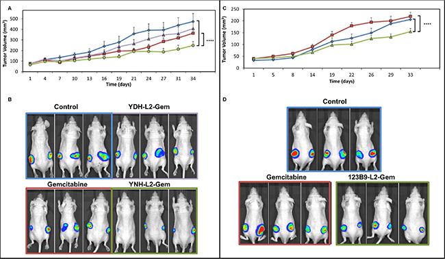 In vivo efficacy studies with gemcitabine and its EphA2-targetting-gemcitabne conjugates.