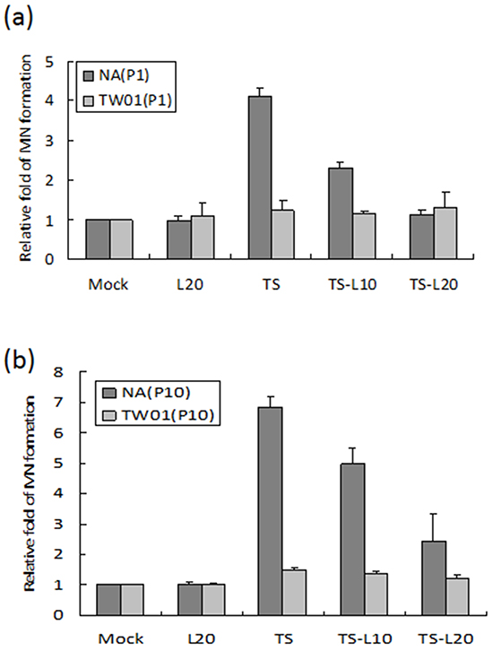 Luteolin inhibits reactivation-induced MN formation.